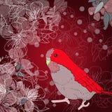 红色鸟 库存例证