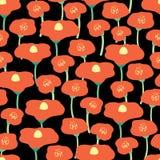 红色鸦片开花无缝的传染媒介背景 黑背景的红色鸦片草甸 背景花卉减速火箭 调遣花 手 向量例证