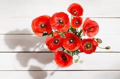红色鸦片花束在玻璃花瓶的 免版税图库摄影