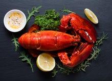 红色龙虾 库存照片