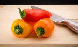 红色,橙色和黄色婴孩胡椒/辣椒的果实 库存照片