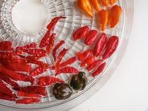 红色,橙色,黄色和黑胡椒的混合的射击 免版税库存图片