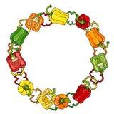 红色,橙色,黄色,绿色响铃Peper花圈 一半胡椒裁减甜辣椒粉和圆环  新鲜的成熟未加工的蔬菜 免版税库存图片