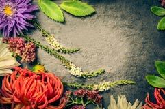 红色,白色和蓝色花的安排与叶子的在板岩黑暗的背景,顶视图,被定调子 免版税库存图片