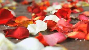 红色,白色玫瑰花瓣在一个大理石瓦片驱散了 影视素材