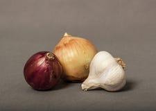 红色,白洋葱和大蒜电灯泡 免版税库存图片