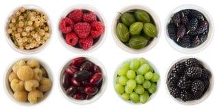 红色,黑,黄色和绿色食物 果子和莓果在白色隔绝的碗 与拷贝空间的甜和水多的莓果文本的 r 库存图片