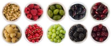 红色,黑,黄色和绿色食物 果子和莓果在白色隔绝的碗 与拷贝空间的甜和水多的莓果文本的 r 图库摄影
