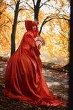 红色头发妇女浪漫画象红色明亮的礼服的有爱好者的由纸牌做成 心脏的女王 创造性的概念 库存照片