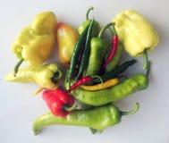 红色绿色黄色上色了在白色演播室背景的各种各样的匈牙利辣椒粉 免版税库存图片