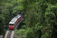 红色巴西火车绿色密林Tijuca里约热内卢 免版税库存照片