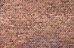 红色brickwall表面 库存照片