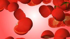 红色cutted跌倒在模糊的红色背景的蕃茄 股票录像