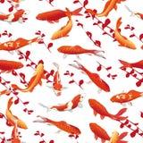 红色koi鲤鱼无缝的传染媒介印刷品 库存图片