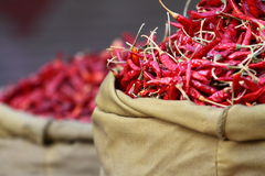 红色paprica在传统菜市场上。 免版税库存照片