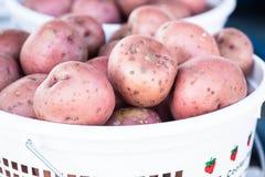 红色Potatos篮子在农夫市场上 免版税库存图片