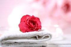 红色rosse 库存图片