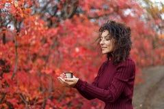 红色sweather的年轻黑发妇女与杯子在红色autumnn灌木的热的饮料 免版税库存图片