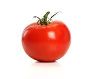红色tomatoe 库存照片