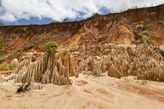 红色Tsingy峡谷风景在马达加斯加 免版税库存图片