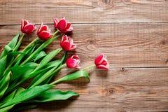 红色tulps 在木背景的花 复制spase 库存照片