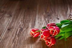 红色tulps 在木背景的花 复制spase 免版税图库摄影