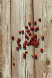 红草莓和黑醋栗顶视图在老木桌上 免版税库存图片