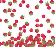 红草莓样式 免版税库存照片