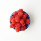 红草莓 免版税库存照片