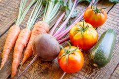 红萝卜、甜菜根、蕃茄和夏南瓜在加尔省采摘了 免版税库存图片