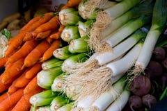 红萝卜、韭葱和唐莴苣 免版税库存图片