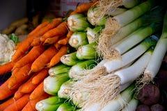 红萝卜、韭葱和唐莴苣 库存照片