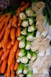 红萝卜、韭葱和唐莴苣 免版税库存照片