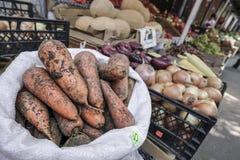 红萝卜和其他菜在一个开放的市场上 免版税库存照片