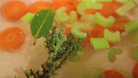 红萝卜和芹菜变白对水 股票录像