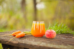 从红萝卜和苹果的开胃汁液 免版税库存图片