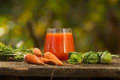 从红萝卜和苹果的开胃汁液 免版税库存照片