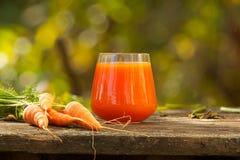 从红萝卜和苹果的开胃汁液 库存图片