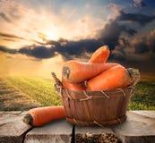 红萝卜和风景 免版税库存图片