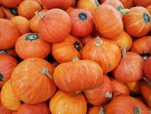 红萝卜堆 免版税库存图片