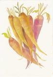 一束的手画水彩红萝卜 免版税库存照片