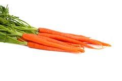 红萝卜新鲜有机 免版税库存照片