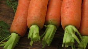 红萝卜新鲜有机 影视素材