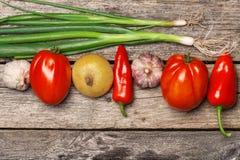 红萝卜新鲜的葱表蕃茄蔬菜弄湿了木 库存照片