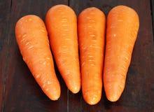 红萝卜菜 免版税图库摄影