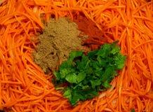 红萝卜被磨碎的沙拉 免版税库存照片