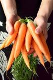 红萝卜递存在 免版税库存照片