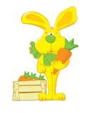 红萝卜野兔黄色 免版税库存照片