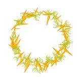 红萝卜水多的圆的框架  免版税库存照片
