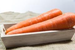 红萝卜 免版税图库摄影